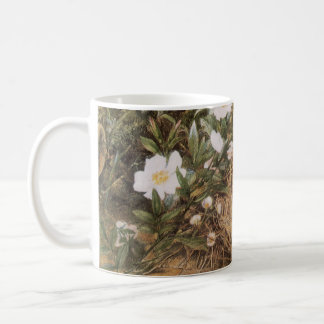 Victorian Art, Birds Nest and Dog Roses by JW Hill Classic White Coffee Mug