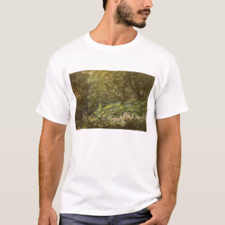 Victorian Fairies, Under the Dock Leaves by Doyle T-Shirt