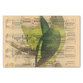Victorian Music Sheet Watercolor Bird Wallpaper Tissue Paper