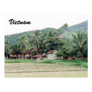 vietnam rice paddies postcard