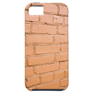 View angle on the brick wall iPhone 5 cover