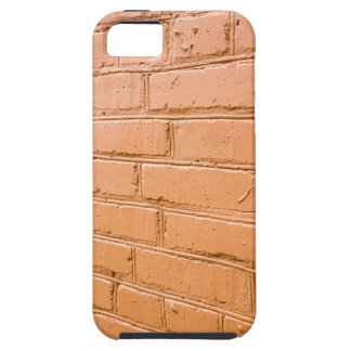 View angle on the red brick wall iPhone 5 case