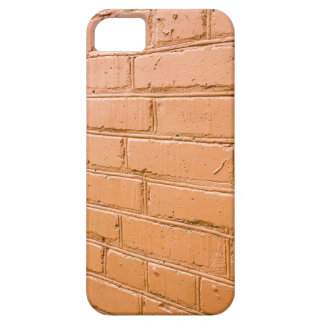 View angle on the red brick wall iPhone 5 cases