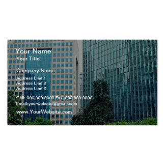 View from Equitable Plaza, Pittsburgh, Pennsylvani Pack Of Standard Business Cards
