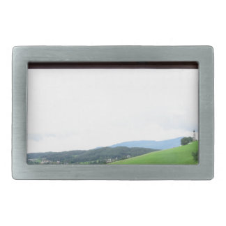 View from the window belt buckles