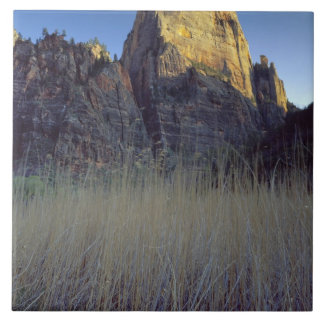 View from Virgin River flood plain, Zion Canyon Tile