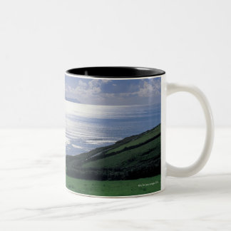 view of a grassy slope by the sea Two-Tone coffee mug