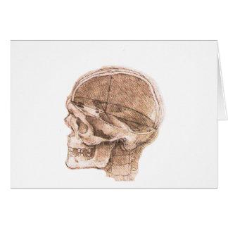 View of a Skull Leonardo da Vinci Card
