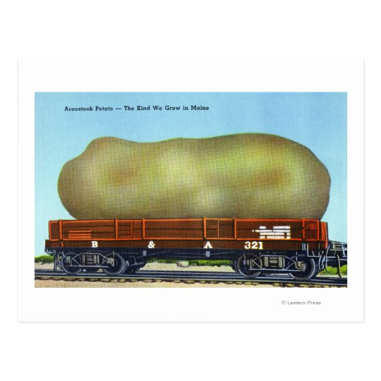 View of an Aroostook Potato on a Train Trolley Postcard