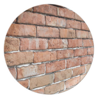 View of an old brick wall with a blur at an angle plate