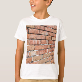 View of an old brick wall with a blur at an angle T-Shirt