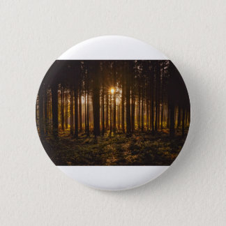 View of Black Trees and Sun 2 Inch Round Button