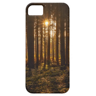View of Black Trees and Sun Case For The iPhone 5