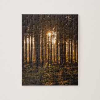 View of Black Trees and Sun Jigsaw Puzzle