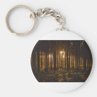 View of Black Trees and Sun Keychain