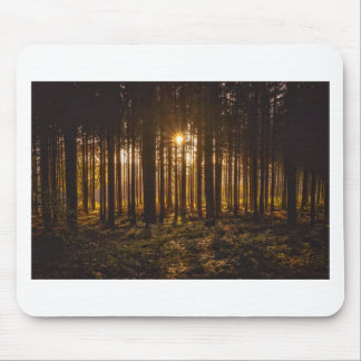 View of Black Trees and Sun Mouse Pad