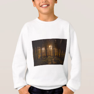View of Black Trees and Sun Sweatshirt