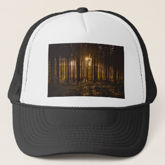 View of Black Trees and Sun Trucker Hat