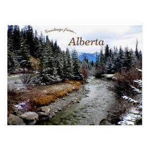 View of Bow River Alberta Canada Postcard