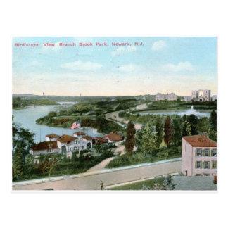 View of Branch Brook Park, Newark NJ 1911 Vintage Postcard