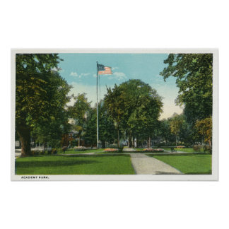 View of Flagpole at Academy Park Poster