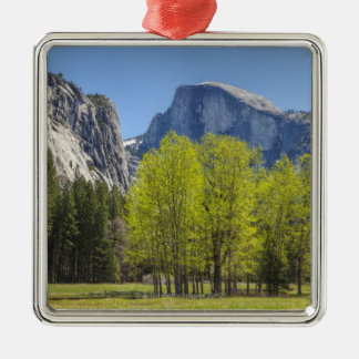 View of Half Dome Metal Ornament