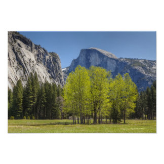 View of Half Dome Poster