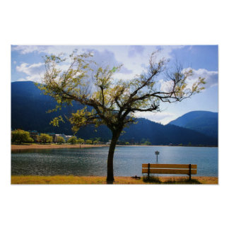 View of harrison hot springs poster