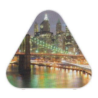 View of Lower Manhattan and the Brooklyn Bridge Speaker