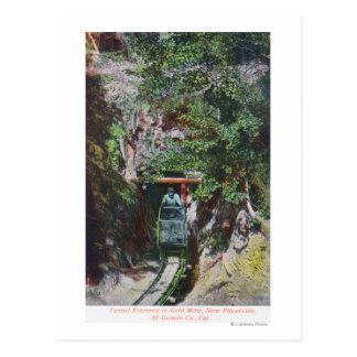 View of Miner Exiting Tunnel Entrance to Gold Postcard