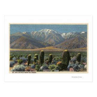 View of Mt. San Jacinto Near Palm Springs Postcard