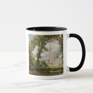 View of Salisbury Cathedral from the Bishop's Grou Mug