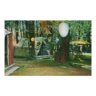 View of Scotts Camp, RedwoodsRussian River, CA Poster