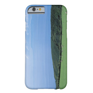 view of sheep grazing on lush hillside barely there iPhone 6 case
