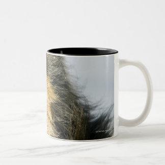View of shetland sheepdog Two-Tone coffee mug