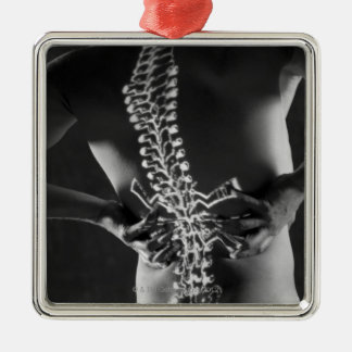 View of spinal chord metal ornament