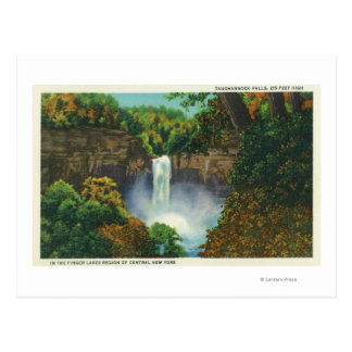 View of Taughannock Falls, 215 Feet High Postcard