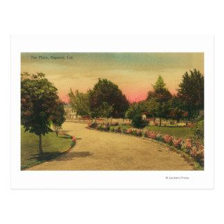 View of the City PlazaHayward, CA Postcard