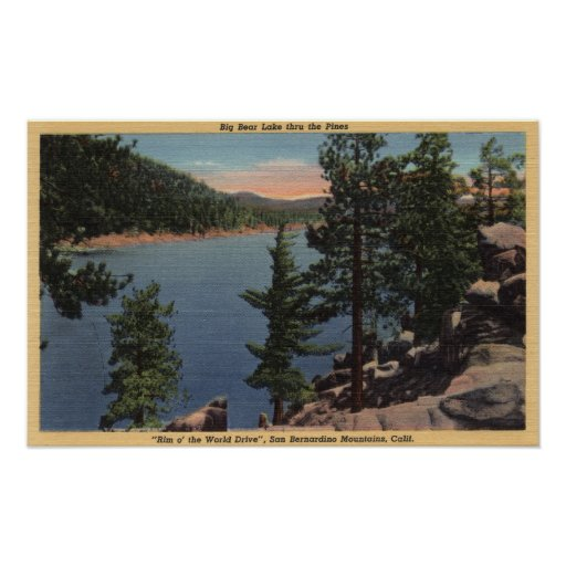 View of the Lake through the Pines Poster