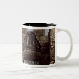 View of the Lion Gateway Two-Tone Coffee Mug