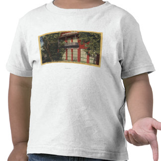 View of the Old Wells-Fargo Office 1855 T-shirts