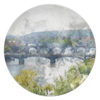 View of the Vltava River and the bridges, Prague, Plate