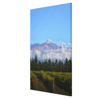 View Of Vineyard With Mountain On Background Canvas Print