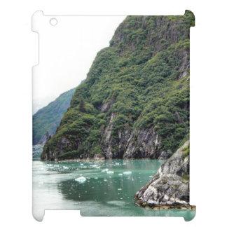 Views Through a Fjord Ipad Case