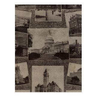 Views Washington, DC Postcard