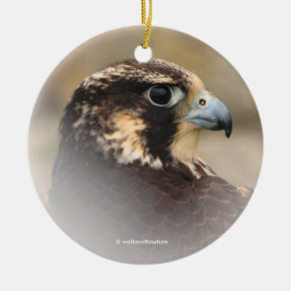 Vignetted Profile of a Peregrine Falcon Ceramic Ornament