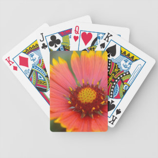 Viibrant Flora Bicycle Playing Cards