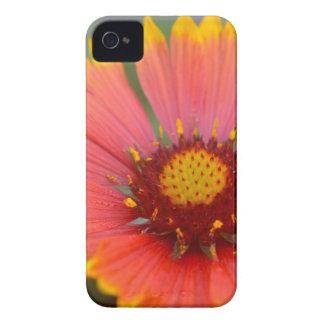Viibrant Flora Case-Mate iPhone 4 Case