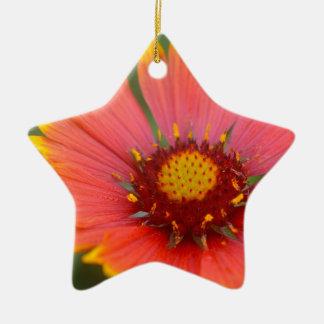 Viibrant Flora Ceramic Ornament