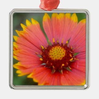 Viibrant Flora Metal Ornament